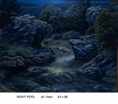 night pool copy